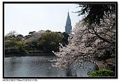 080405 新宿御苑 櫻花樹下野餐:DSC_1957.jpg