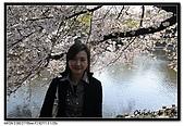 080405 新宿御苑 櫻花樹下野餐:DSC_1963.jpg