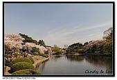 080405 新宿御苑 櫻花樹下野餐:DSC_1968.jpg