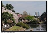 080405 新宿御苑 櫻花樹下野餐:DSC_1970.jpg