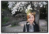 080405 新宿御苑 櫻花樹下野餐:DSC_1984.jpg