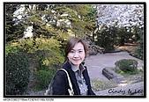 080405 新宿御苑 櫻花樹下野餐:DSC_1990.jpg