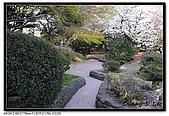 080405 新宿御苑 櫻花樹下野餐:DSC_1992.jpg