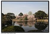 080405 新宿御苑 櫻花樹下野餐:DSC_1994.jpg