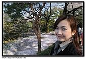 080405 新宿御苑 櫻花樹下野餐:DSC_1999.jpg
