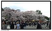 080327 上野恩賜公園 櫻花直擊:CIMG6037.jpg