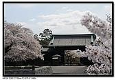 080329 東京櫻花盛開了:DSC_1588.jpg