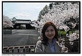 080329 東京櫻花盛開了:DSC_1592.jpg