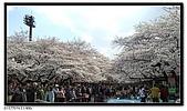 080327 上野恩賜公園 櫻花直擊:CIMG6042.jpg