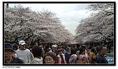 080327 上野恩賜公園 櫻花直擊:CIMG6043.jpg