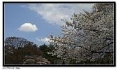 080327 上野恩賜公園 櫻花直擊:CIMG6048.jpg