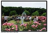 080607 京成玫瑰園:DSC_2820.jpg