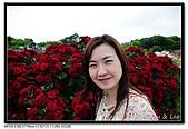 080607 京成玫瑰園:DSC_2826.jpg