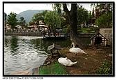 080615 河口湖 音樂森林:DSC_3026.jpg