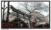 080327 上野恩賜公園 櫻花直擊:CIMG6170.jpg