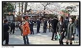 080327 上野恩賜公園 櫻花直擊:CIMG6176.jpg