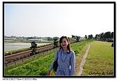 080429 埼玉 牛島の藤:DSC_2250.jpg