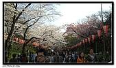 080327 上野恩賜公園 櫻花直擊:CIMG6193.jpg