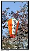 080327 上野恩賜公園 櫻花直擊:CIMG6202.jpg
