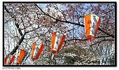 080327 上野恩賜公園 櫻花直擊:CIMG6203.jpg