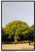 080405 新宿御苑 櫻花樹下野餐:DSC_2096.jpg
