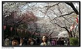 080327 上野恩賜公園 櫻花直擊:CIMG6204.jpg