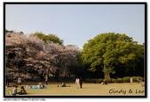 080405 新宿御苑 櫻花樹下野餐:DSC_2097.jpg