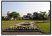 080429 埼玉 牛島の藤:DSC_2269.jpg