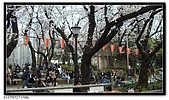 080327 上野恩賜公園 櫻花直擊:CIMG6074.jpg