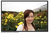 080607 京成玫瑰園:DSC_2723.jpg