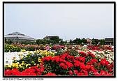 080607 京成玫瑰園:DSC_2856.jpg