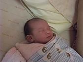 525妹妹誕生囉:DSCF0010.JPG