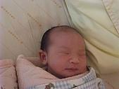 525妹妹誕生囉:DSCF0011.JPG