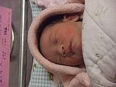 525妹妹誕生囉:DSCF0019.JPG