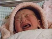 525妹妹誕生囉:DSCF0022.JPG