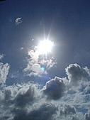 豔夏午後:DSC00332
