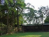 桃園神社:DSC03765.JPG