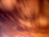 愛河夜拍:DSC01059