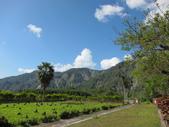 茶山產業道路紀行:IMG_1684.JPG