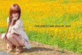 新社花海2012~Q咩咩:DSC_2929拷貝.jpg