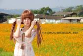 新社花海2012~Q咩咩:DSC_2925拷貝.jpg