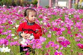 小葵跟虎姑公在家門口的花海:DSC_7582.JPG