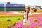 新社花海2012~Q咩咩:DSC_2863拷貝.jpg