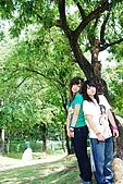 台中體育場-忠烈祠:DSC_3006.JPG