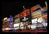 台北101跨越年:146.jpg
