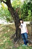 台中體育場-忠烈祠:DSC_3011.JPG