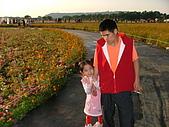 2007-12-1(新社花海節):DSCF5014.JPG