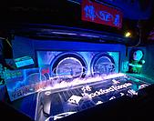 中台灣汽車音響比賽:DSC_3770.jpg