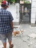 【100530-31】四人一犬遊:1176580208.jpg