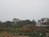 319-15台南西港穀倉餐廳:農村風光.JPG
